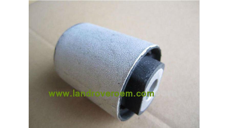 Control Arm Bushing RGX000060